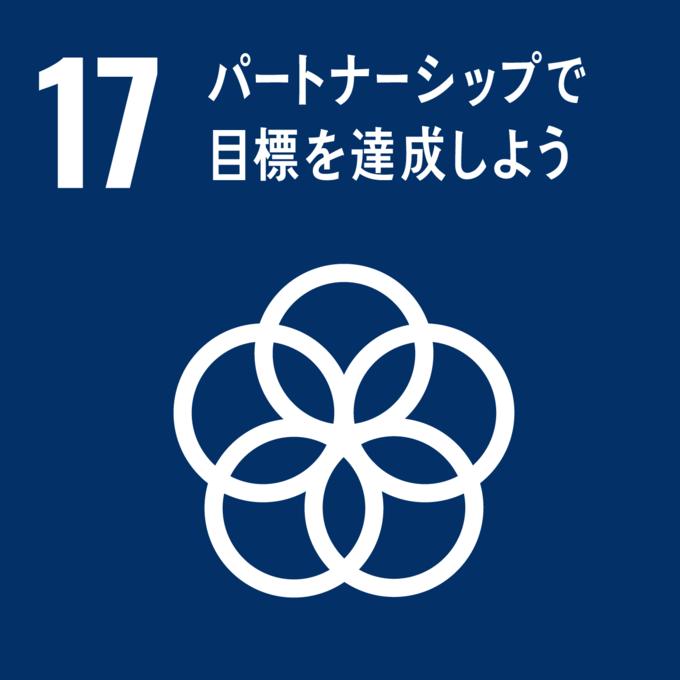 Retina sdg icon 17 ja 2